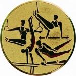 Вкладыш Гимнастика м. A131