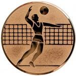 Вкладыш Волейбол A6/B