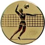 Вкладыш Волейбол A6/G
