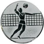 Вкладыш Волейбол A6/S
