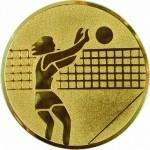 Вкладыш Волейбол жен. A7