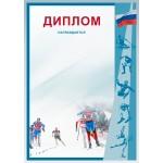 Диплом зимние виды спорта Д-13